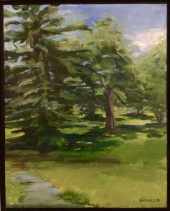 Suzanne Dinger, Grove in Cadwalader Park