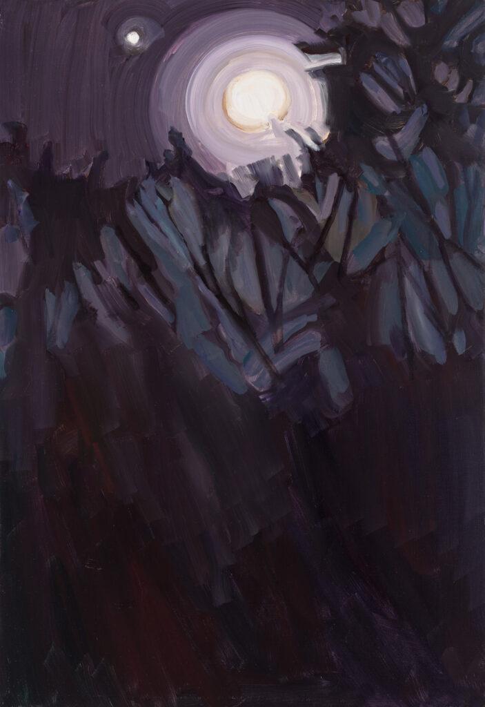 Moon Circles, Elizabeth O'Reilly