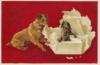 PPC Christmas 34 1907