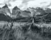 Paine Massif Patagonia - Mary Rigby